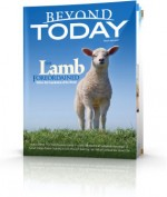 The Lamb Foreordained