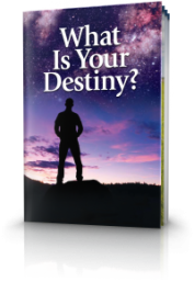 What is Your Destiny?